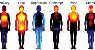 mapa emociones humanas