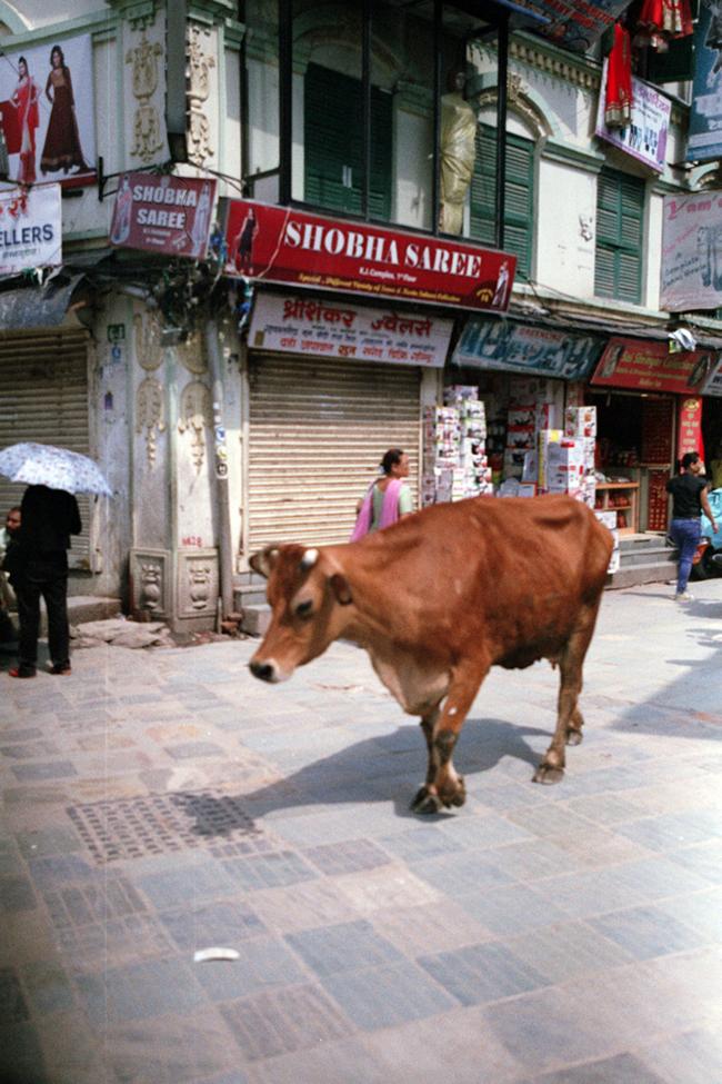 Katmandu130